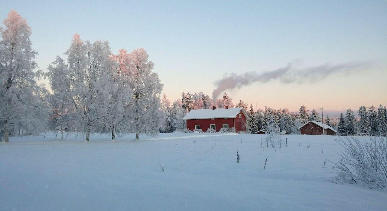 Wintercheck Haus Garten